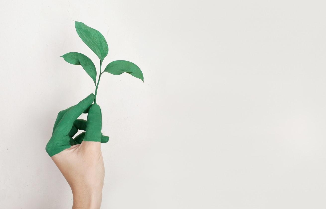 Dane dla zdrowej planety. Realizacja celów unijnej polityki środowiskowej i wzrostu gospodarczego