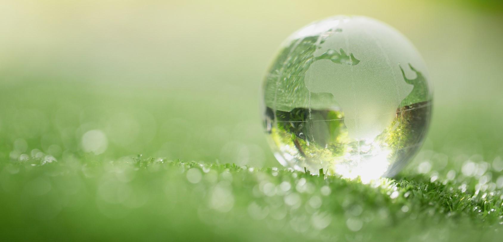 Zrównoważony rozwój: projektowanie opakowań – wymagania, prawo, dobre praktyki. Film szkoleniowy